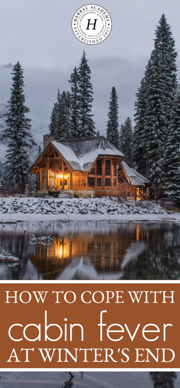 How To Cope with Cabin Fever At Winter's End | Herbal Academy | The last weeks of winter can oftentimes feel the most challenging. Here are some ways to use herbs for coping with cabin fever as winter's end.