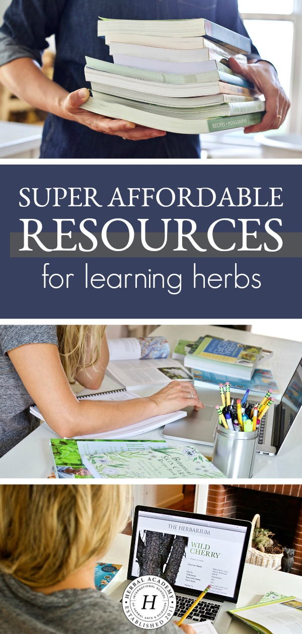 Super Affordable Resources For Learning Herbs | Herbal Academy | Today, we're sharing several affordable resources that you can use to help you learn more about herbs no matter where you are in your herbal journey!