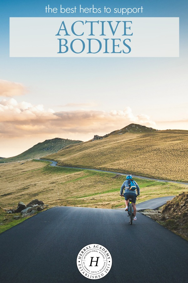 The Best Herbs To Support Active Bodies   Herbal Academy   Whether you are an elite athlete, avid yogi, or casual hiker, learn about some herbs to support active bodies—addressing nourishment, energy, and recovery.