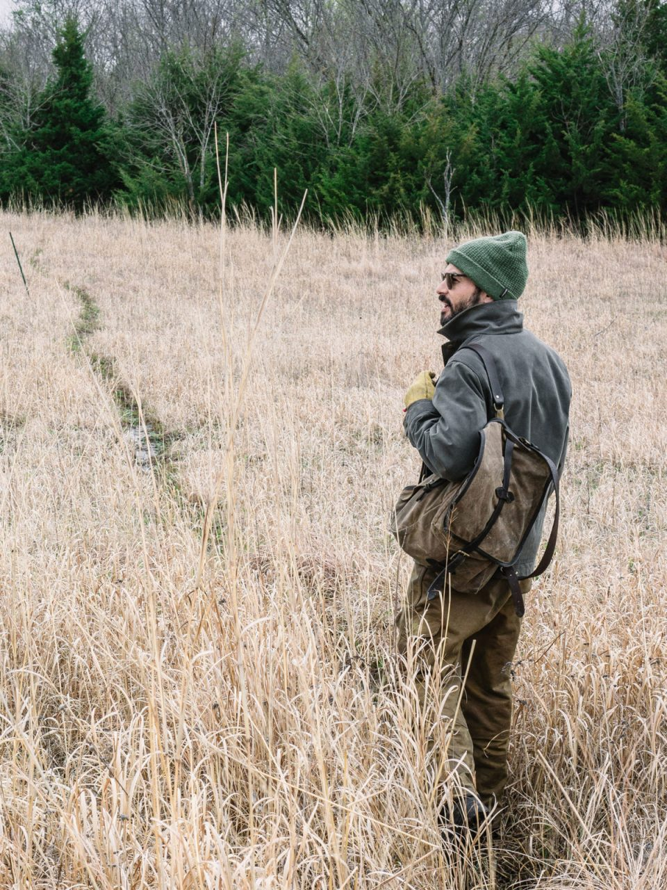 The Foraging Course by Herbal Academy - foraging
