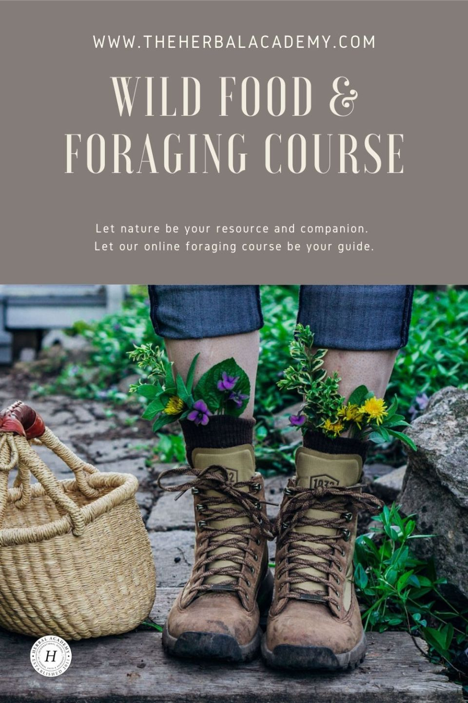 Introducing Our NEW Foraging Class! | The Herbal Academy | To make the most of sweet summertime, we've got just the challenge to keep you engaged and exploring all season long: a foraging class!