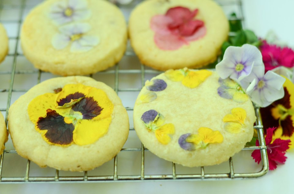 Floral Cookies to Celebrate the Summer Solstice (+Video!) | Herbal Academy | There are many ways to celebrate the summer solstice, including lighting a candle, spending time outdoors, and baking homemade floral cookies.