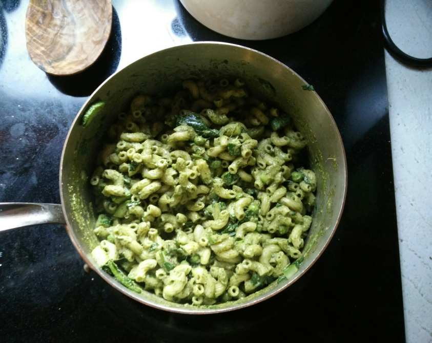 swiss chard pasta recipe healthy vegan pesto with swiss chard leaves cook swiss chard pesto healthy