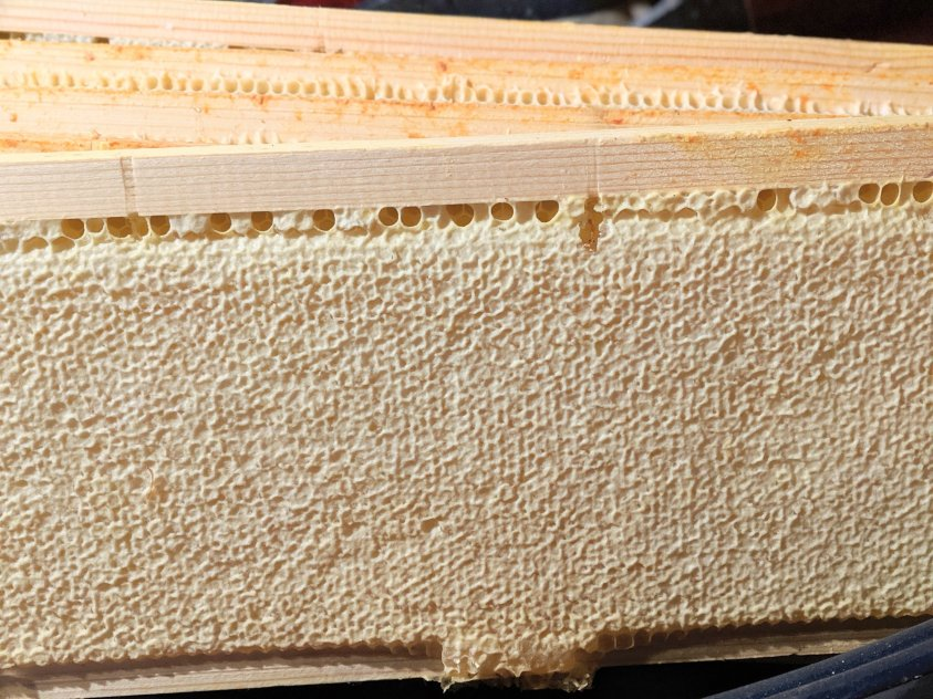 where does beeswax come from, how do bees make wax?