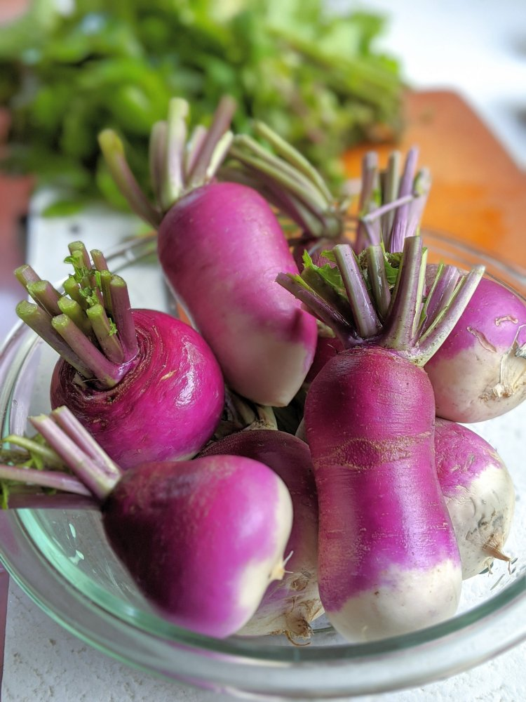 what to make with turnips from your garden/ easy healthy yummy mashed turnips recipe with garlic and spices