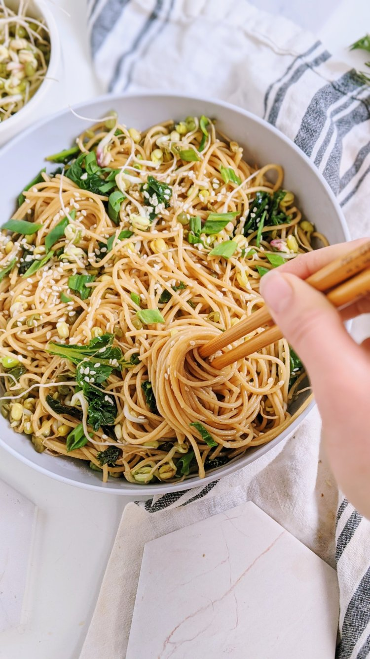 vegan garlic sesame noodles recipe vegan gluten free 15 minutes easy recipes dinners lunches make ahead