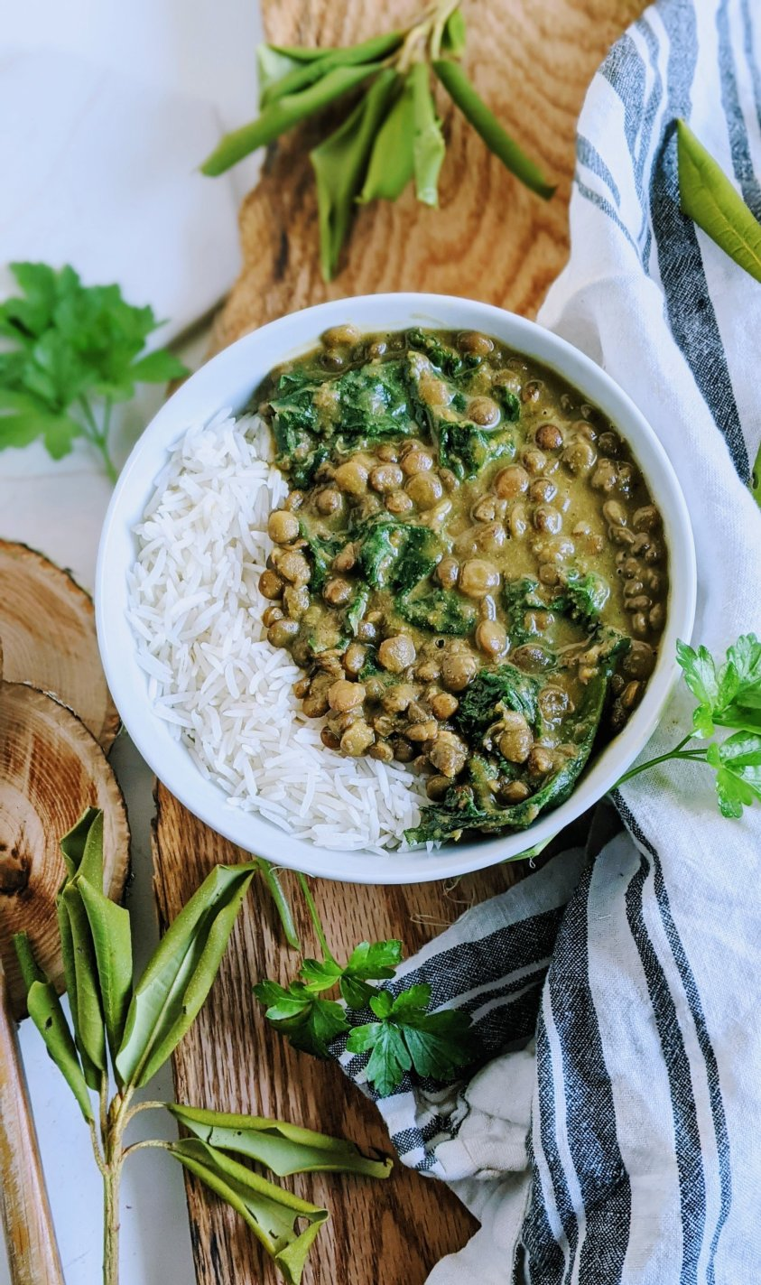 easy coconut milk curry with lentils indian food high protein vegan dairy free non dairy healthy curry recipes with french green lentil sor brown lentils