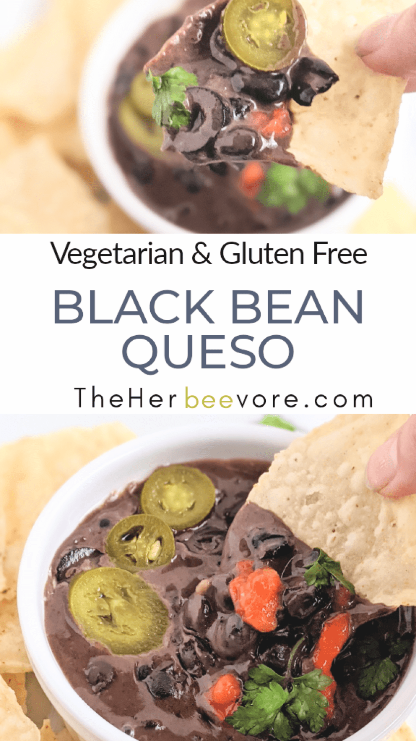 gluten free black bean queso recipe vegetarian high protein vegan option queso plant based healthy party dip appetizer recipe