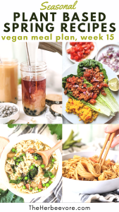 plant based recipes for spring healthy vegan spring time recipes with seasonal spring produce soups for spring dinner ideas easter recipes for april vegetarian meatless gluten free