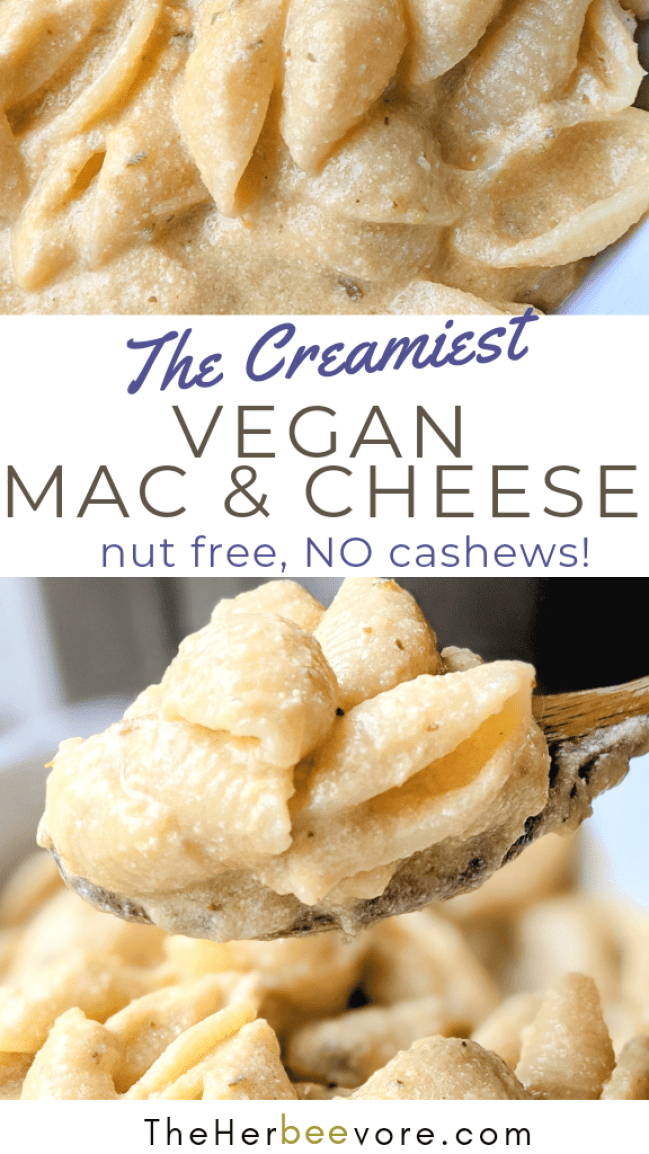 nut free vegan mac and cheese recipe without cashews dairy free macaroni and cheese no nuts mac and cheese with soy milk recipe healthy plant based mac and cheese vegan gluten free