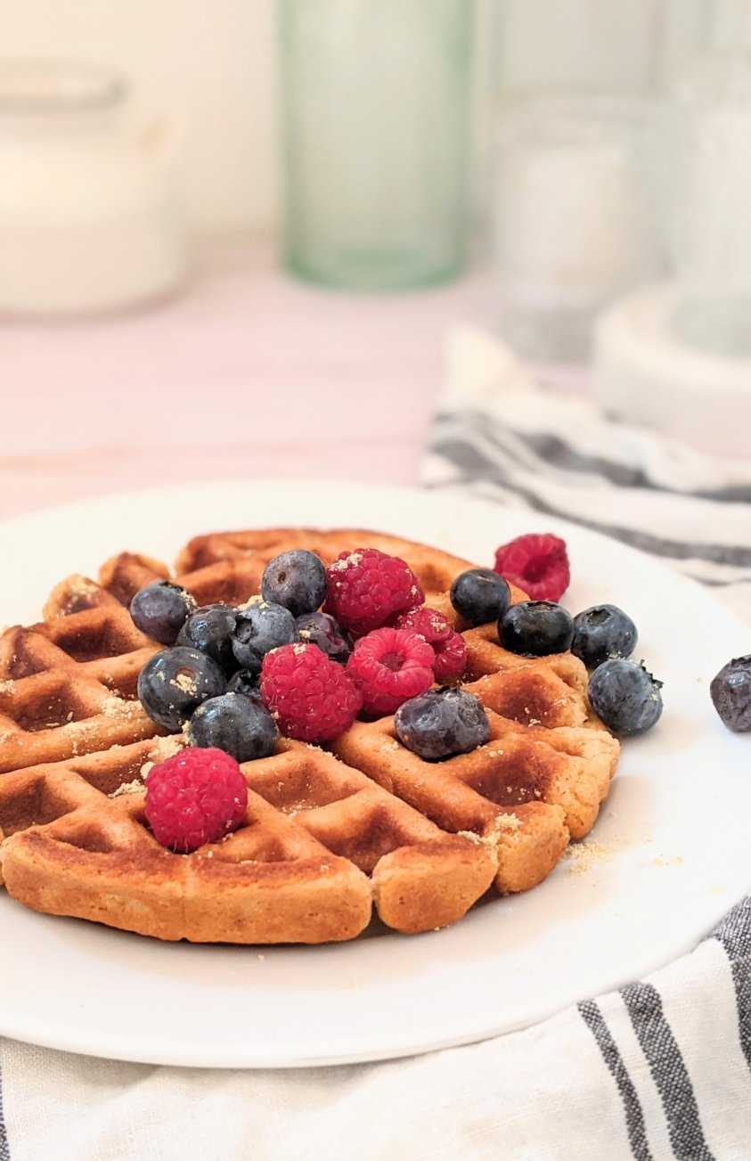 belgian waffles without yeast recipe vegan waffles for brunch dairy free recipes to bring to a bruch or breakfast vegan recipe ideas for plant based brunches