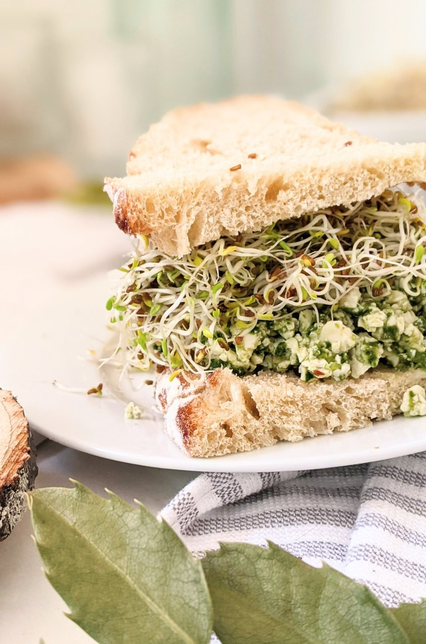 pesto tofu salad sandwich vegan gluten free plant based sandwiches high protein meals with basil walnuts greens and sprouts