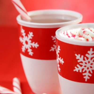 Minty Triple Chocolate Hot Cocoa for Chocolate Monday!
