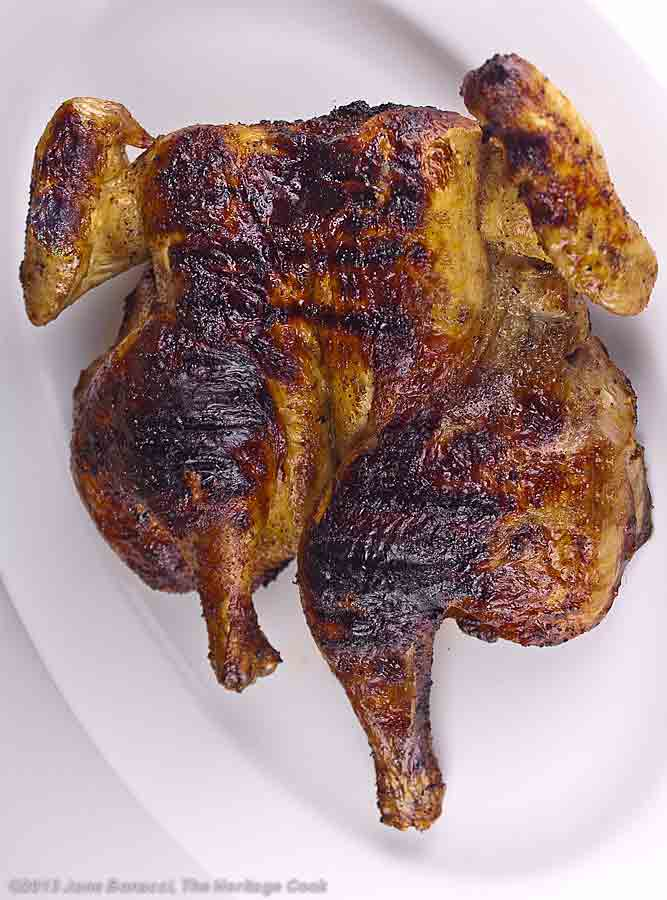 Grilled whole butterflied chicken