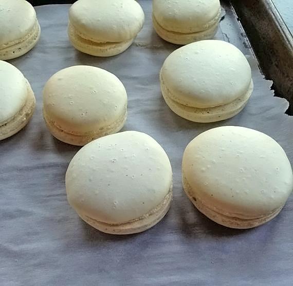 Milano Inspired Macaron Cookies; 2014 Angela Roberts, Spinach Tiger