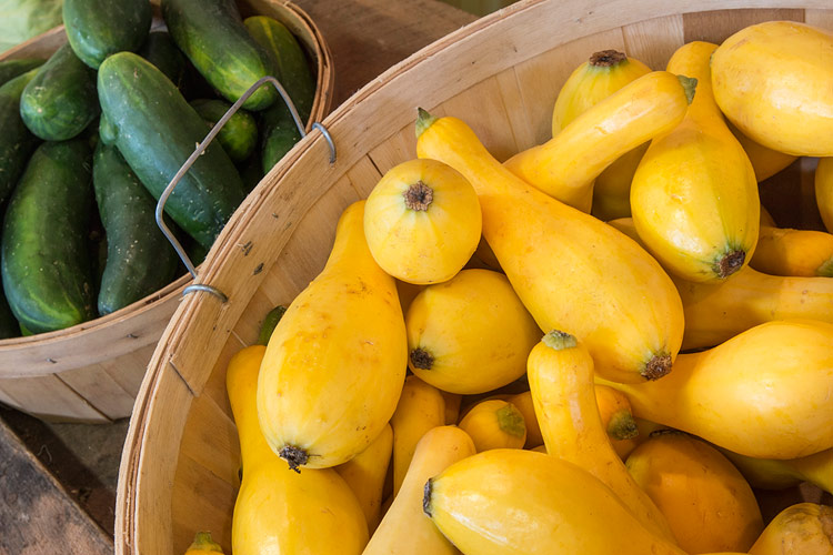 Crook neck squash at the farmer's market; Gluten Free Summer Orzo Pasta Salad, Jane Bonacci, The Heritage Cook
