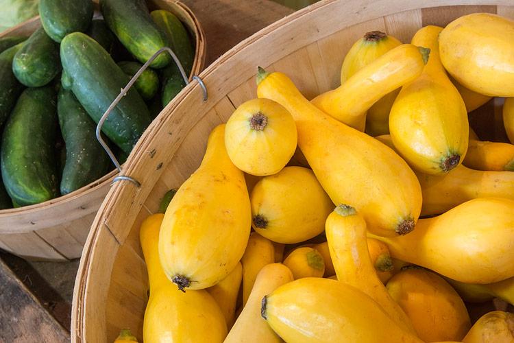 Crook neck squash at the farmer's market; Gluten Free Summer Orzo Pasta Salad, Jane Bonacci, The Heritage Cook
