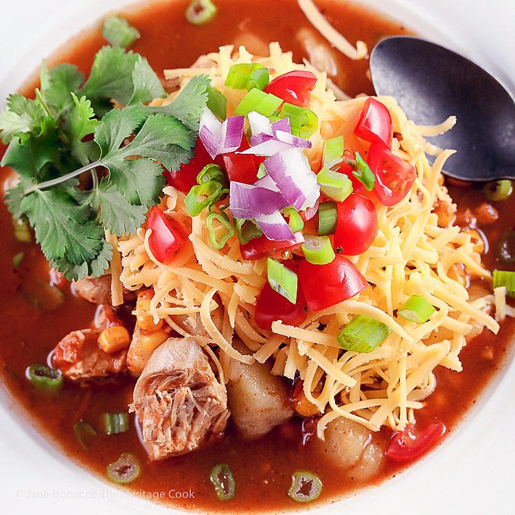 Close up top down of bowl of soup; Instant Pot Chicken Enchilada Soup © 2018 Jane Bonacci, The Heritage Cook