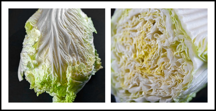 Beautiful Napa cabbage is my favorite for slaw; Copycat KFC Coleslaw © 2018 Jane Bonacci, The Heritage Cook