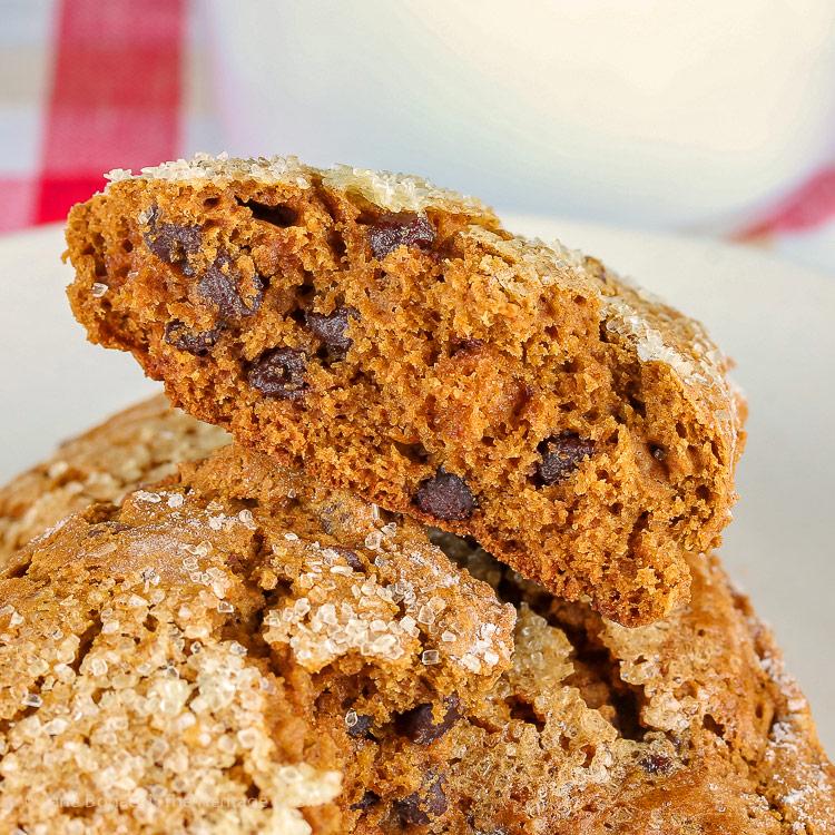 Interior of one scone; Gingerbread Chocolate Chip Scones © 2018 Jane Bonacci, The Heritage Cook