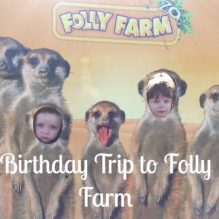 Birthday Trip to Folly Farm