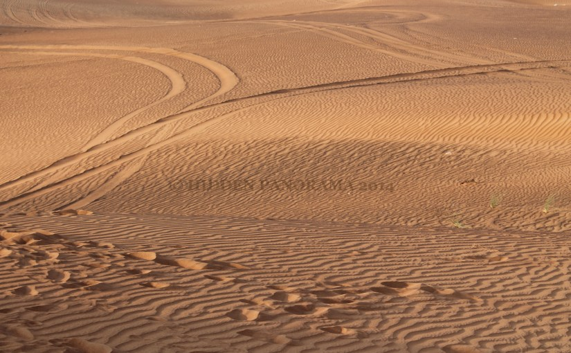 Desert Safari Adventure – Not To Be Missed in Dubai