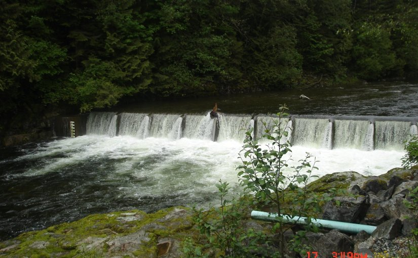 Capilano Fish Hatchery