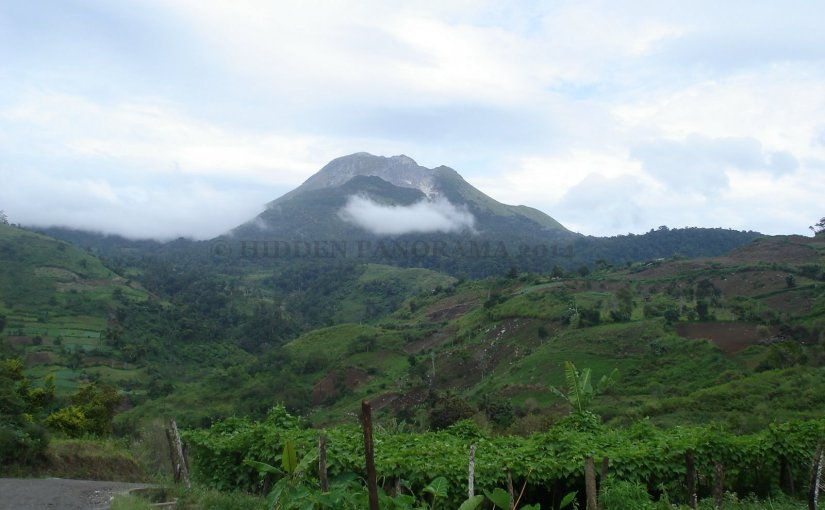 Home : Mount Apo