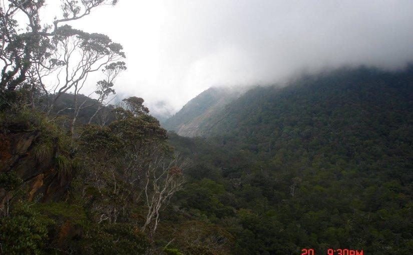 Precious Moment In The Mountain : Mount Kinabalu