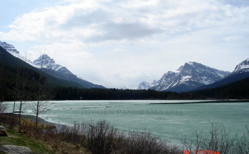Panoramic View : Waterfowl Lake And Surrounding Mountains