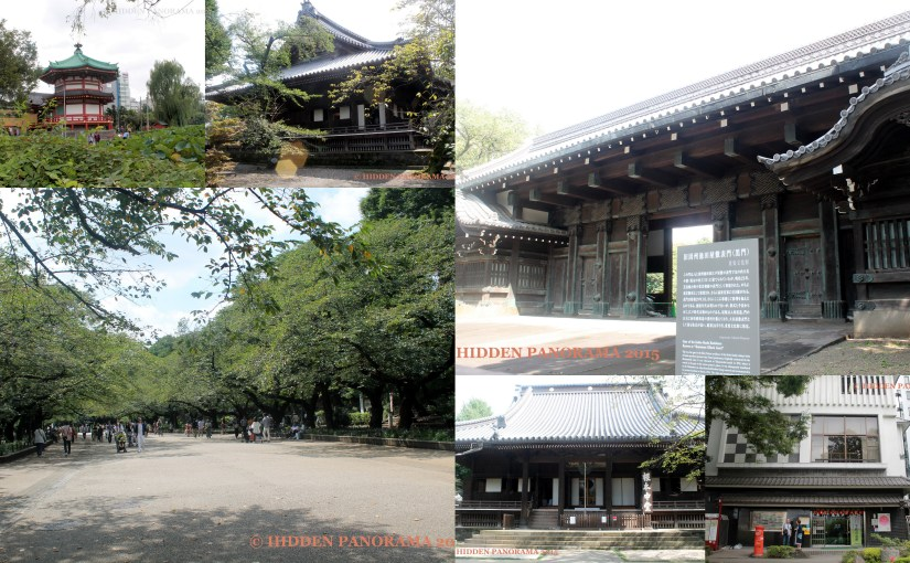 Ueno Park – One of Japan's First Public Park and Once Kaneiji's Ground