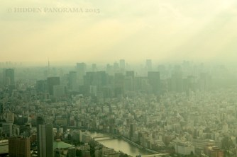 Tokyo – From A Small Fishing Village To A Bustling Metropolitan Prefecture