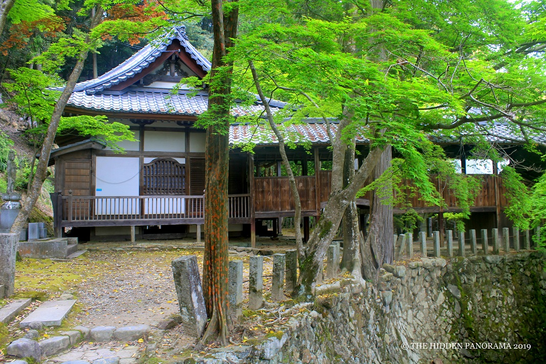 Takatsuki Walks : A Trek to Kabusanji Temple