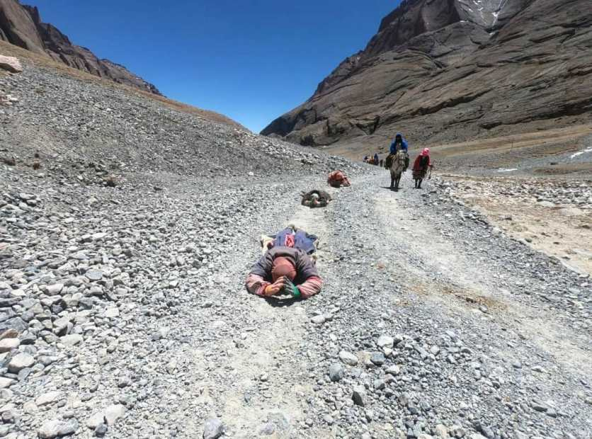 Kailash kora full prostration