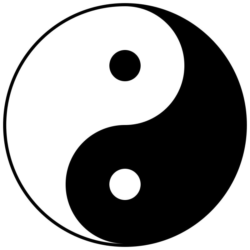 THE YIN AND YANG OF BUSINESS