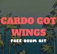 Cardo Got Wings – Free Drum Kit with 147 Samples