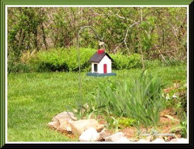 Little House Feeder