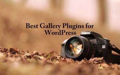Best Gallery Plugins for WordPress