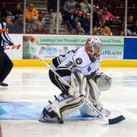 Hershey Bears goaltender Philipp Grubauer. (Annie Erling Gofus/The Hockey Writers)