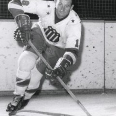 AHL scoring aces like Bronco Horvath could be stars in the expansion division.