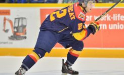 Previewing the OHL's First Round (West)