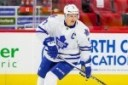 rumor maple leafs