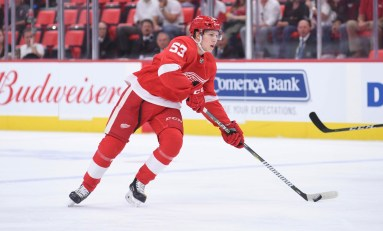 Red Wings 2018 Prospect Update
