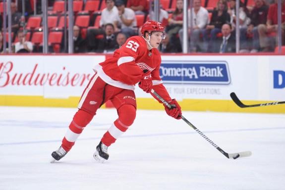 Detroit Red Wings defenseman Dennis Cholowski