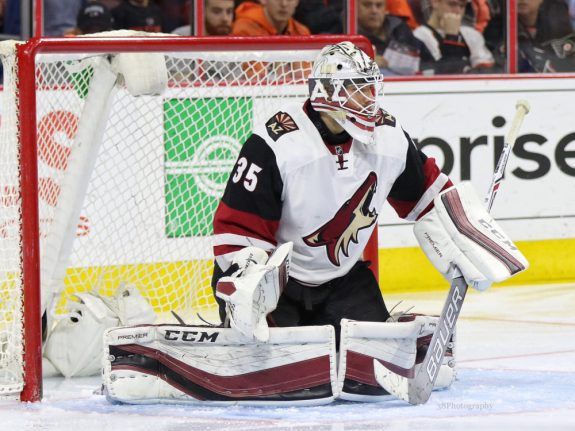 Coyotes re-sign Louis Domingue, Arizona Coyotes, NHL