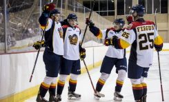 Otters One Win Away From OHL Finals
