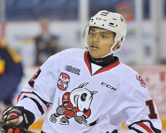 Akil Thomas, OHL, Niagara Icedogs, NHL Draft