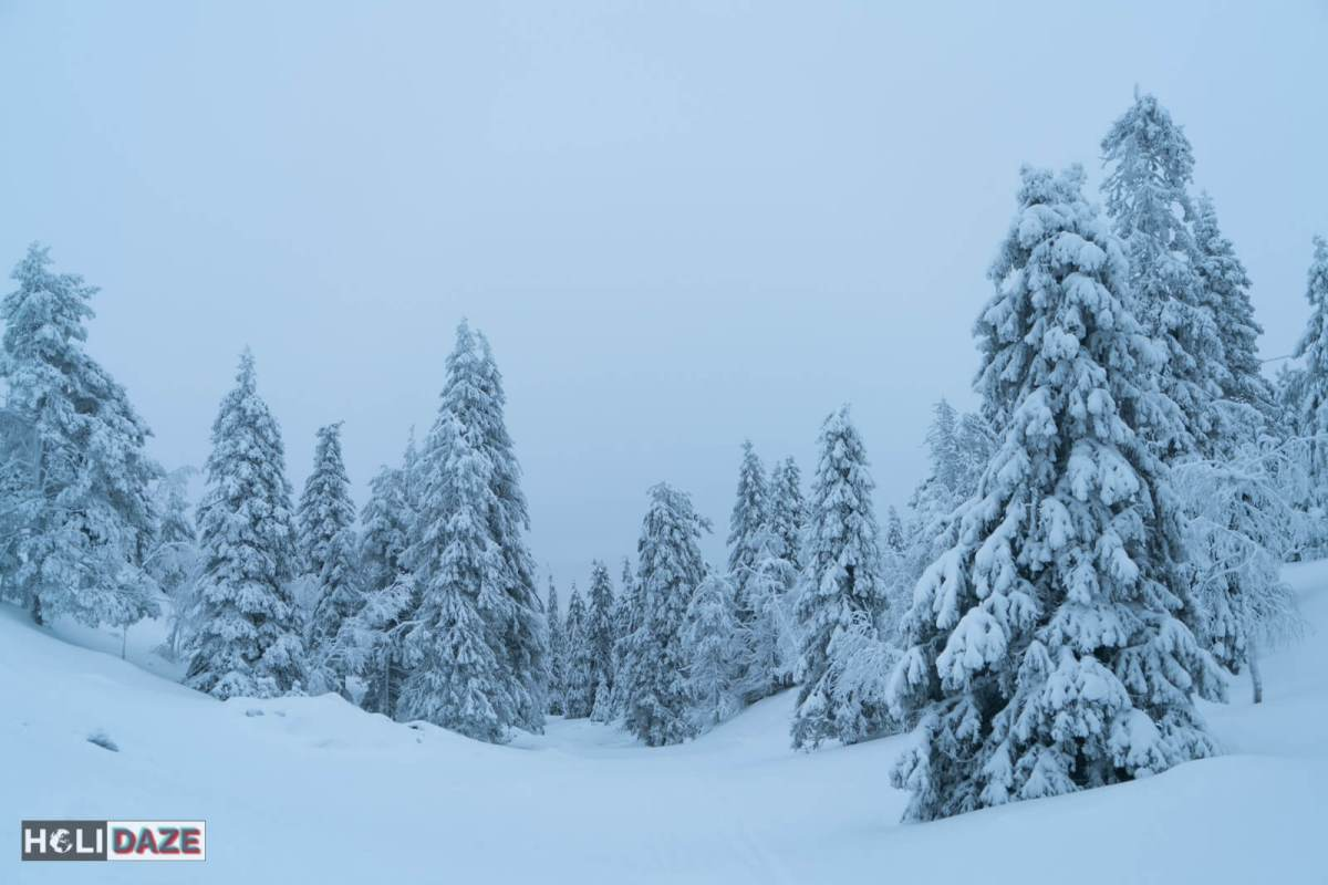 Lapland in Northern Finland is a true winter wonderland -- and reportedly the home of Santa