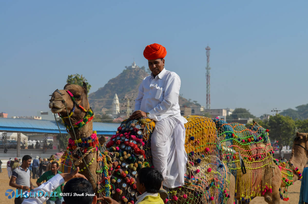 Pushkar Camel Fair 2015