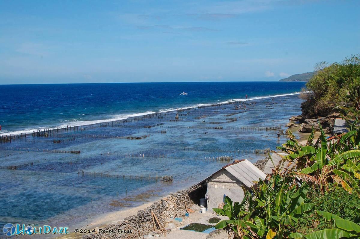 Seaweed farms along the coast of Nusa Penida Island, near Bali, Indonesia